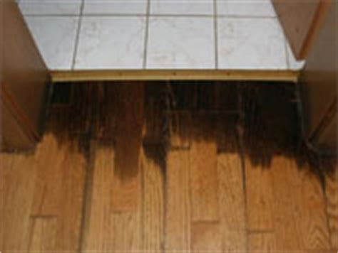 wasserschaden parkett haftpflicht gutachten schaeden und bewertung im gebaeude bauschaeden