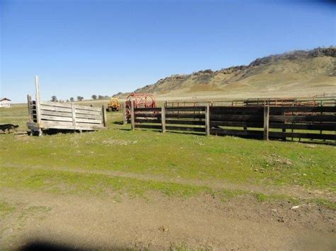 round orland ca 4100 county road 306 orland ca california cattle ranches