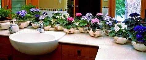 Violet Planter by Violet Pots By Jim And Martha Davis