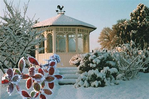 garten im winter referenzen galerie zanders gartenbau aus viersen