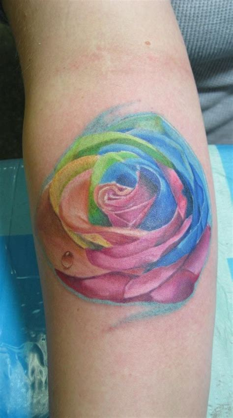 rainbow rose tattoo meaning the 34 best images about rainbow designs on