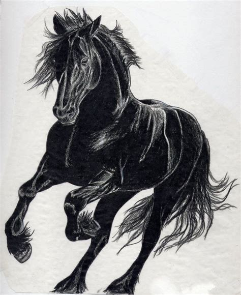 wild horse tattoo designs black black horses