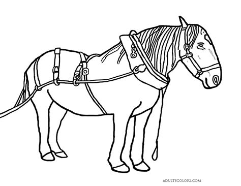 85 coloring pages of draft horses high jumper wagon