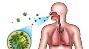 virus corona mewabah kenali penyebab  ciri gejala