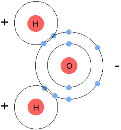diagram of water molecule cyhshonorsbio the chemistry of