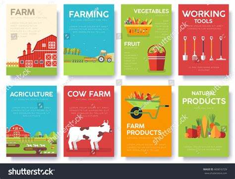 farm information cards set nature template of flyear