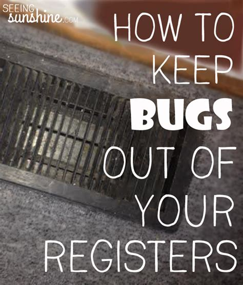 how to keep water bugs out of your house how to keep water bugs out of your house 28 images how to keep bugs out of your
