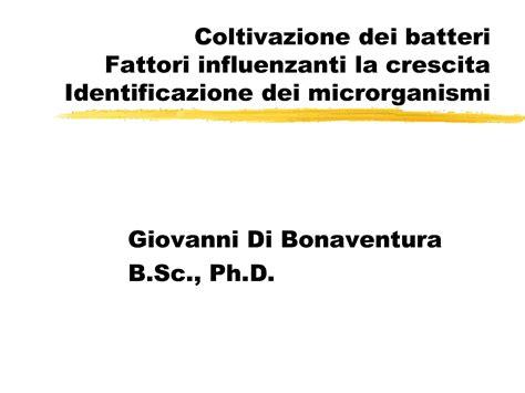 dispense microbiologia coltivazione batterica terreni di coltura dispense