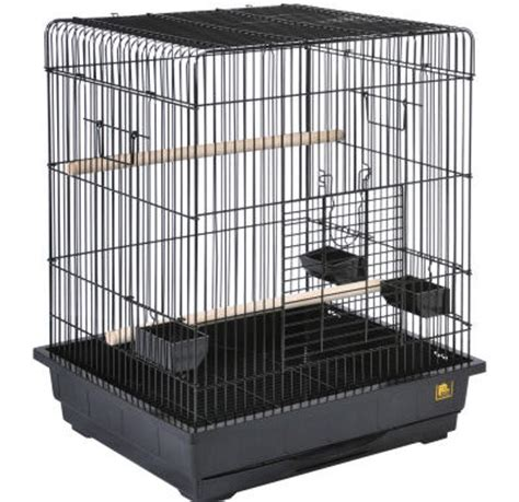 cages petsmart best bird cages from petsmart orlando pet services