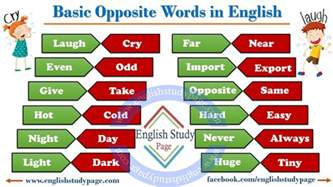 basic opposite words in study page