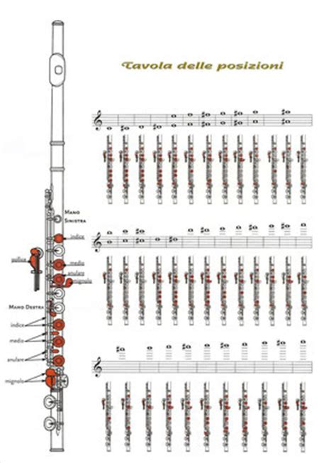 tavola posizioni flauto traverso per il flauto images frompo 1