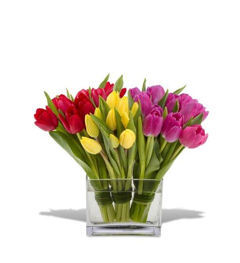 tulips arrangements teleflora s tulips together tfweb129 92 66