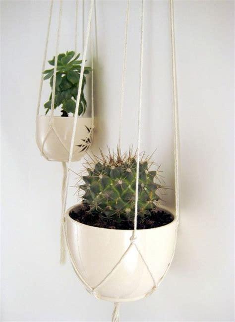 indoor hanging plants hanging indoor plants and patio plants hanging plants