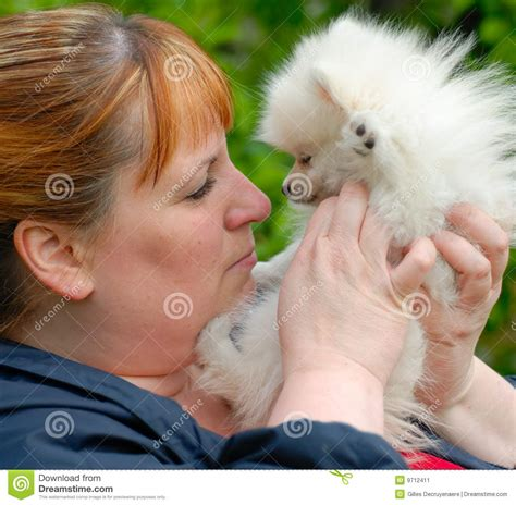 pomeranian nose nose to nose with a white pomeranian puppy stock image image 9712411