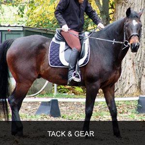english riding riding clothes, horse tack, gear