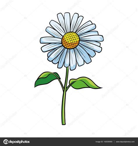 fiore disegno disegno dell illustrazione fiore della margherita