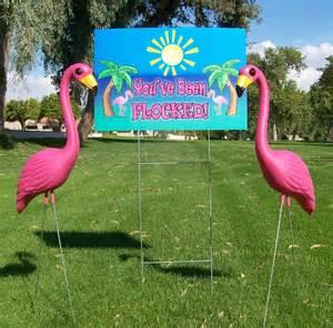 plastic flamingos plastic flamingo the pink flamingo blog