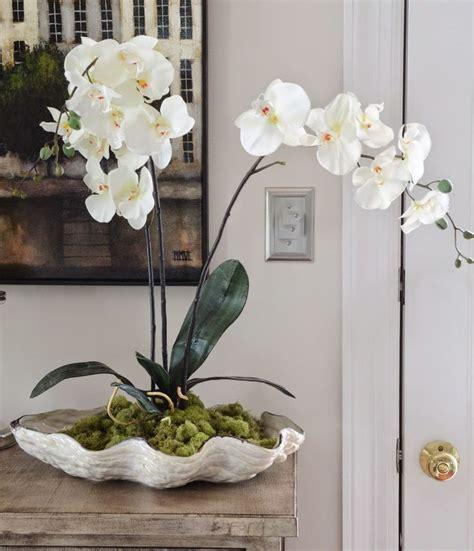 Orchid Planter Ideas by 25 Best Ideas About Orchid Arrangements On