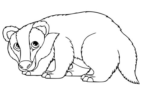 bucky badger helmet coloring pages coloring pages