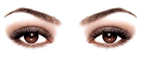 imagenes animadas ojos biolog 205 a en quot tono menor quot 161 ojo s