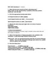 worksheet 2 prokaryotes and protists answers