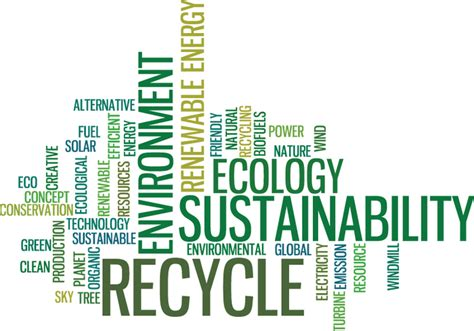 Mba Environmental Sustainability by What Is Environmental Sustainability Mba Today