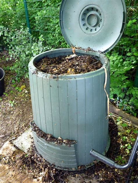 backyard composting bins blogs plant more plants