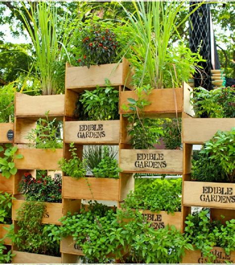 vertical vegetable garden planters ideas para jardines verticales veinticuatro dise 241 os