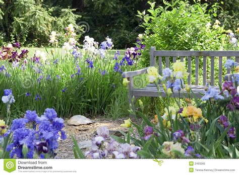 flower garden photos free flower garden royalty free stock photo image 2493265