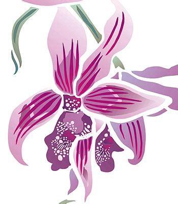 wild orchid home decor wild orchid stencil henny donovan motif