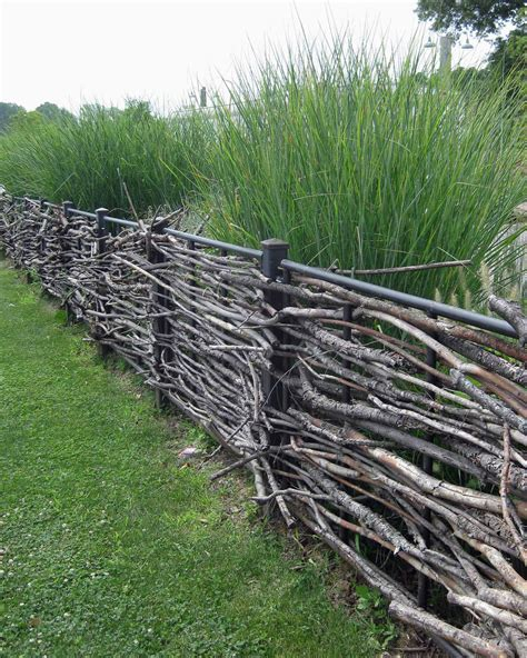 How To Build A Trellis colorful willow fencing miss rumphius rules