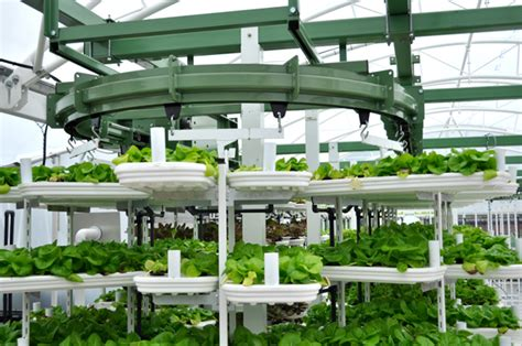 1500 Sq Ft Home Plans vertical farming on rise for urban food supply urban gardens