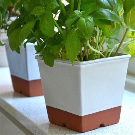 Windowsill Pots by Windowsill Herb Pot Weston Mill Pottery Uk