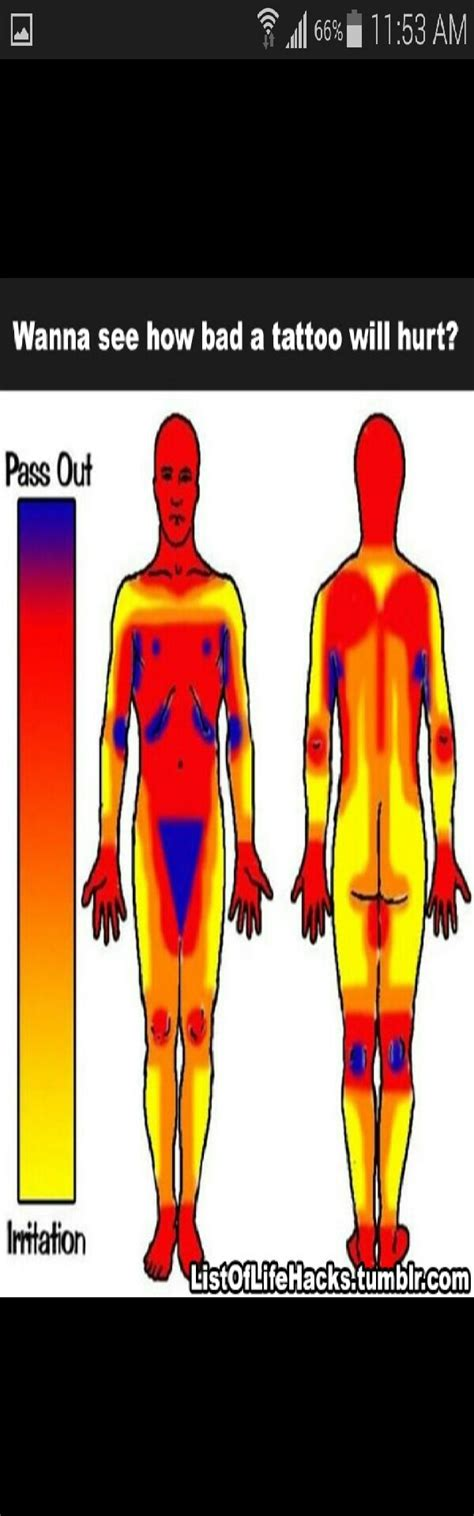 tattoo pain level comparison musely