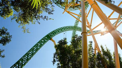 Busch Gardens Vacation Packages by Busch Gardens In Ta Florida Expedia