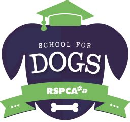 school for dogs school for dogs