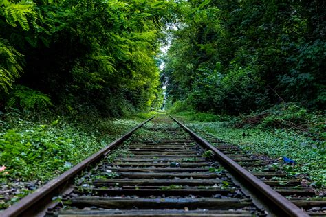 The Rails Green Rails Free Stock Photo