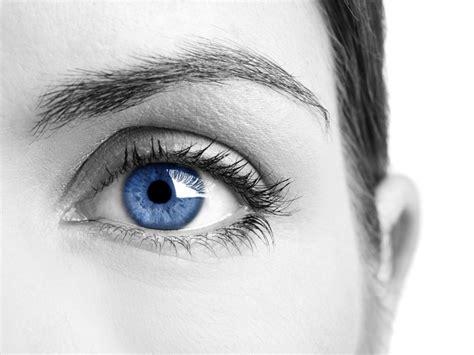 ojos bizcos imagenes 191 el color de ojos predispone al alcoholismo