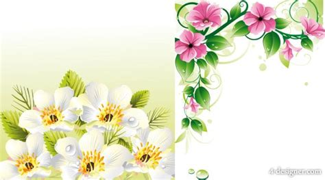 design bolder bunga bunga frame joy studio design gallery best design