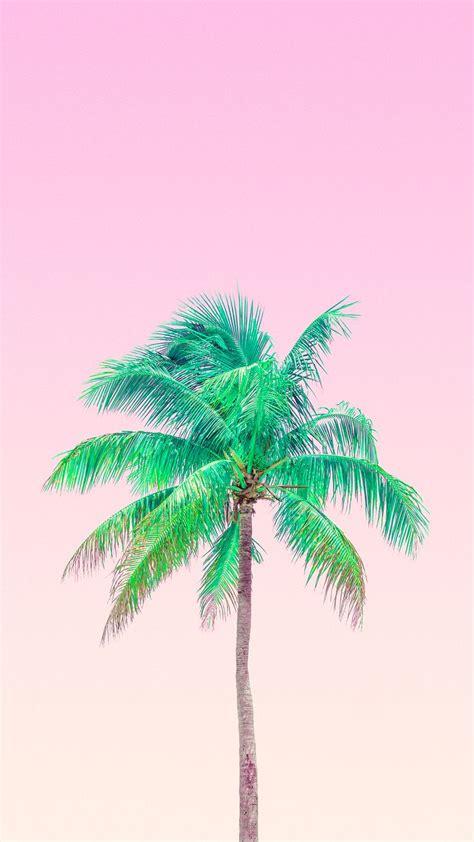 tree wallpaper pinterest best 25 miami iphone wallpaper ideas on pinterest