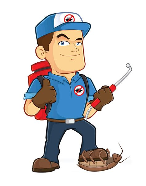 bed bugs exterminators identify your bug photo pest control of bed bugs fleas and cockroaches