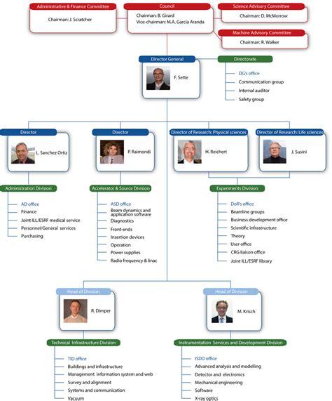 organizational chart organisation chart