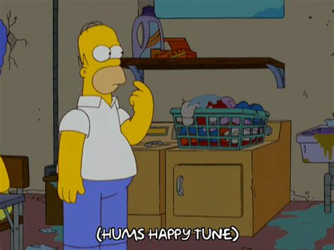 homer simpson laundry gif find & share on giphy