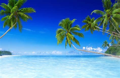 immagini da sogno spiagge da sogno 3 attualissimo it scienza
