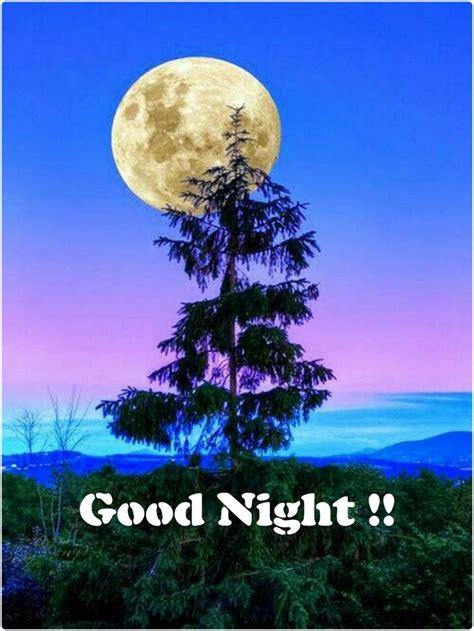 imagenes have good night pin de claudia veronica en buenas noches pinterest