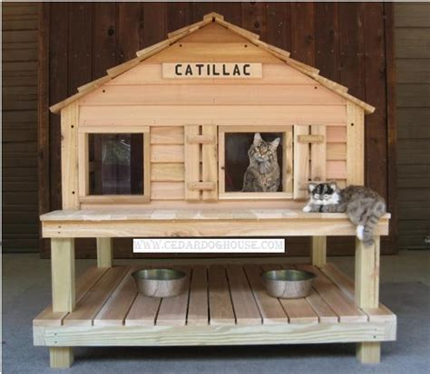 outside cat house catillac cats house