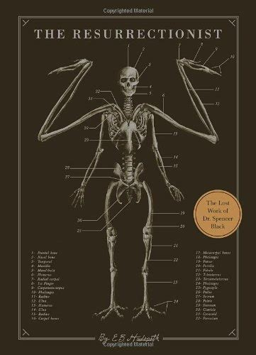 libro the resurrectionist the lost libro the sick rose disease and the art of medical illustration di richard barnett