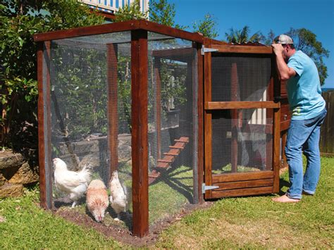 chook house designs how to build a chook house new zealand handyman magazine