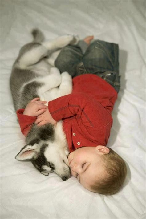 puppy and baby sleeping ones