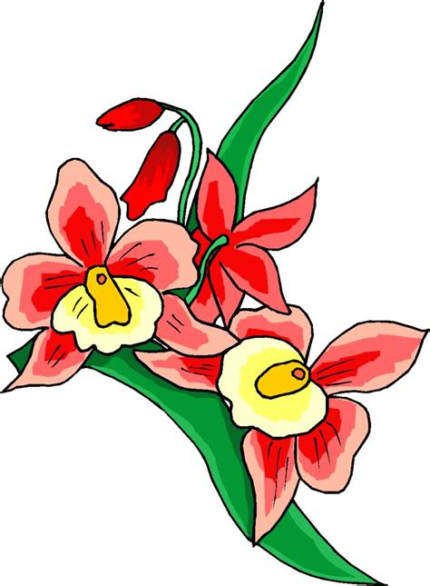 flower clipart all cliparts flowers clipart